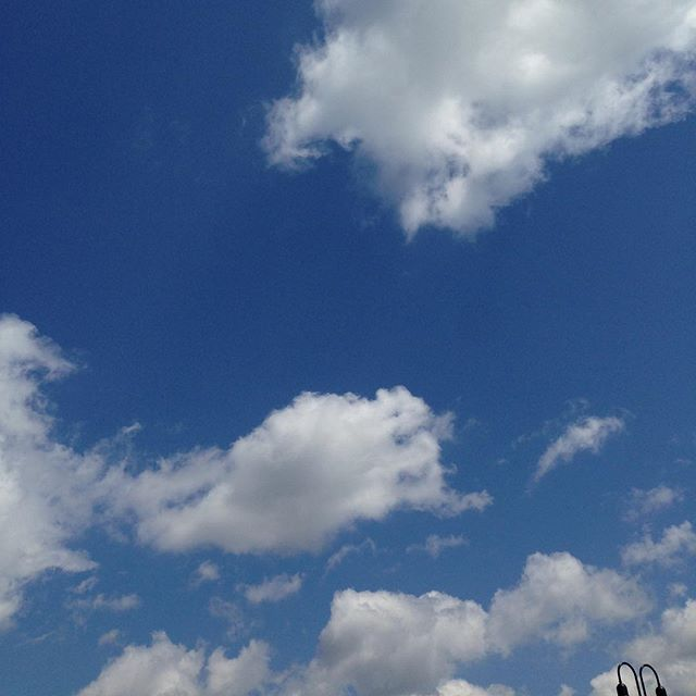 It's this kind of day. #cloudappreciationsociety #blueskies