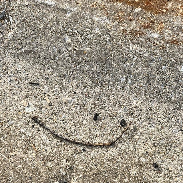 Have a nice day! #iseefaces #iseefaceseverywhere