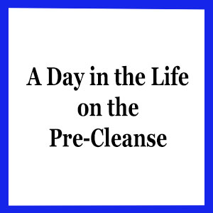 Blue Cleanse Document-Icon.jpg