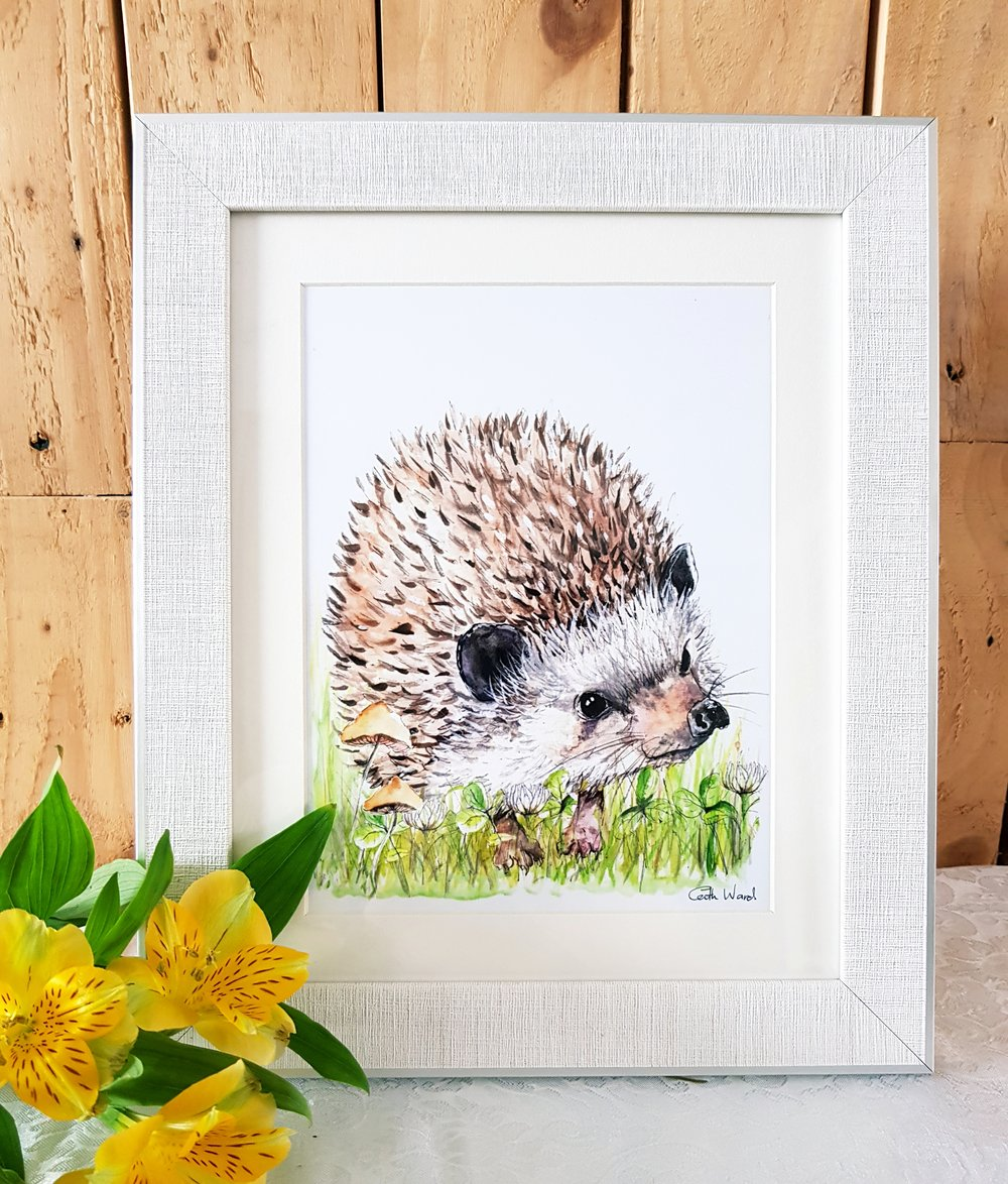 hedgehog framed.jpg