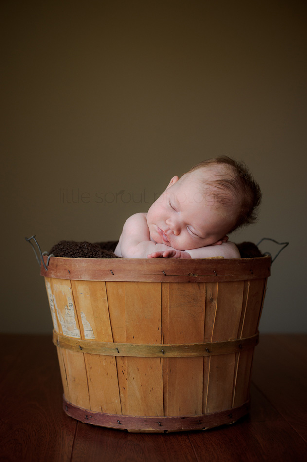san-diego-newborn-photographer-6