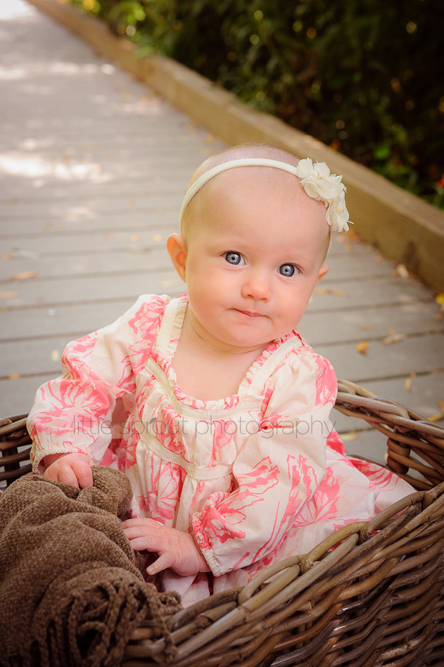 baby-photography-07