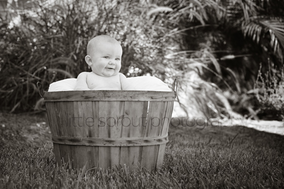 San Diego Baby Photographer | Baby in Apple Basket
