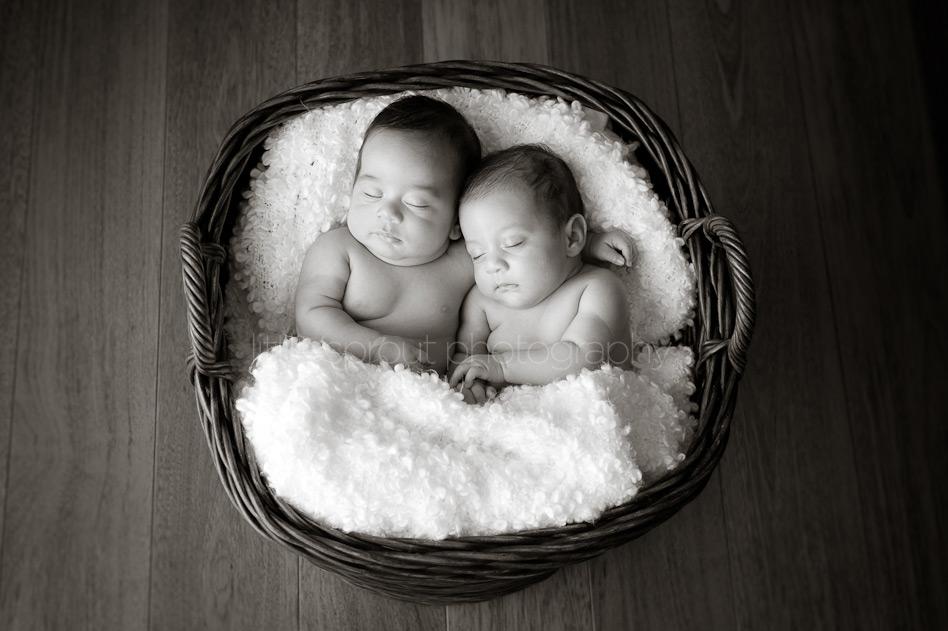 san diego newborn twins photography