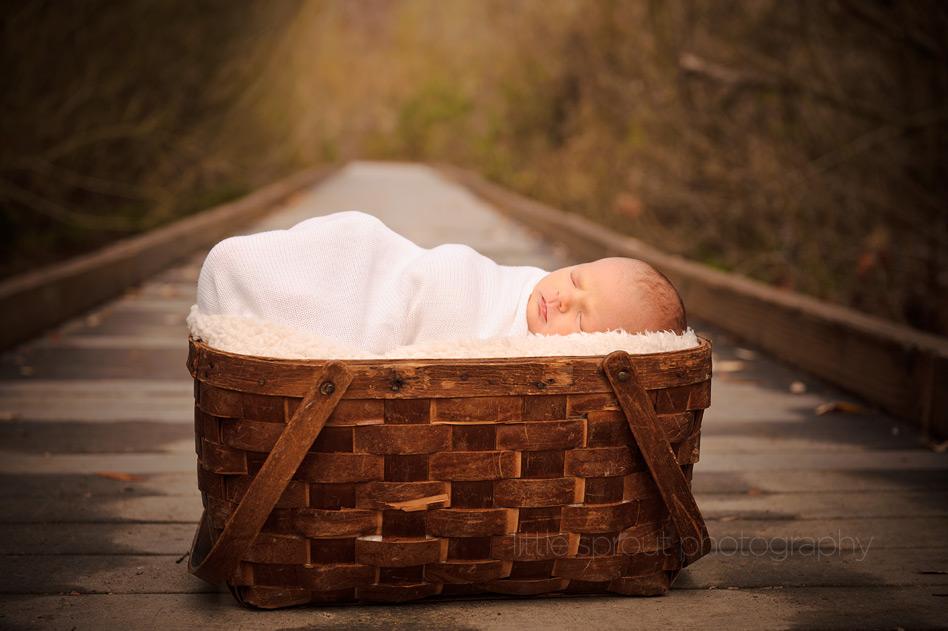 newborn baby photographer san diego