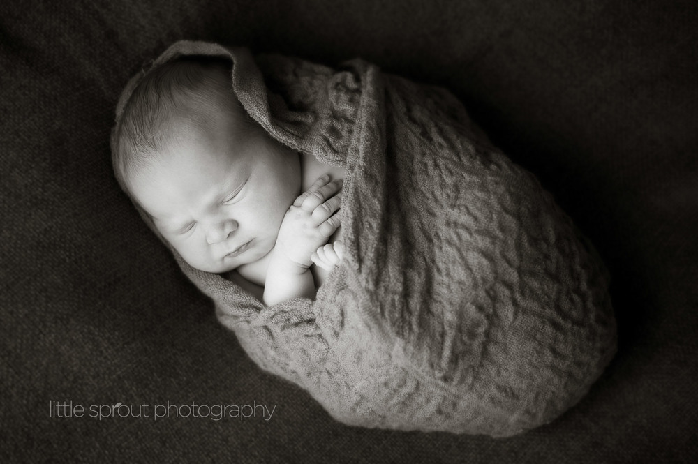 little-sprout-photography-newborn-15.jpg