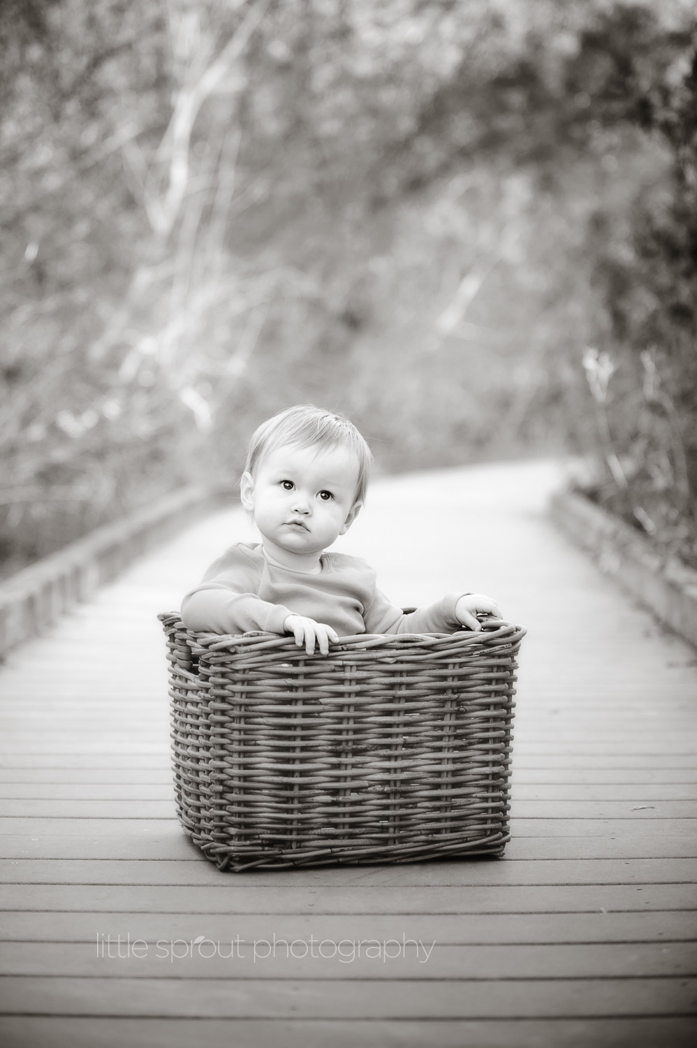 little-sprout-photography-babies-18.jpg