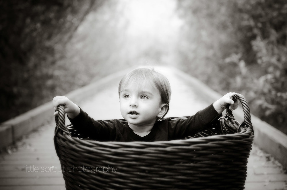 little-sprout-photography-babies-25.jpg