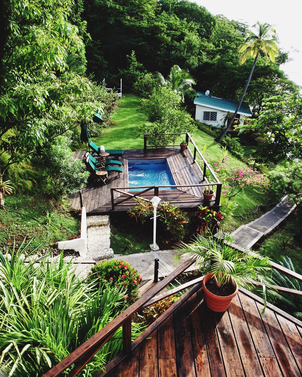 The lush garden view of our Airbnb in Grenada.
