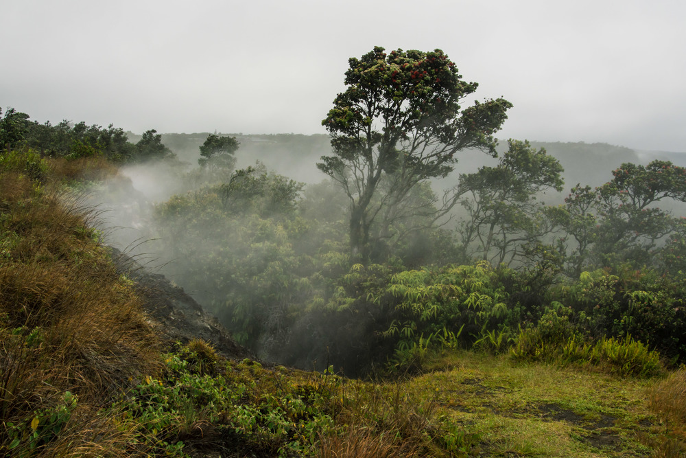 Volcanoes National Park, Big Island HI