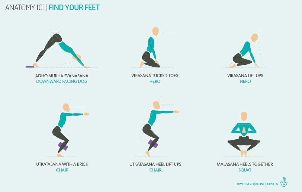 Anatomy 101 Find Your Feet Yogaru