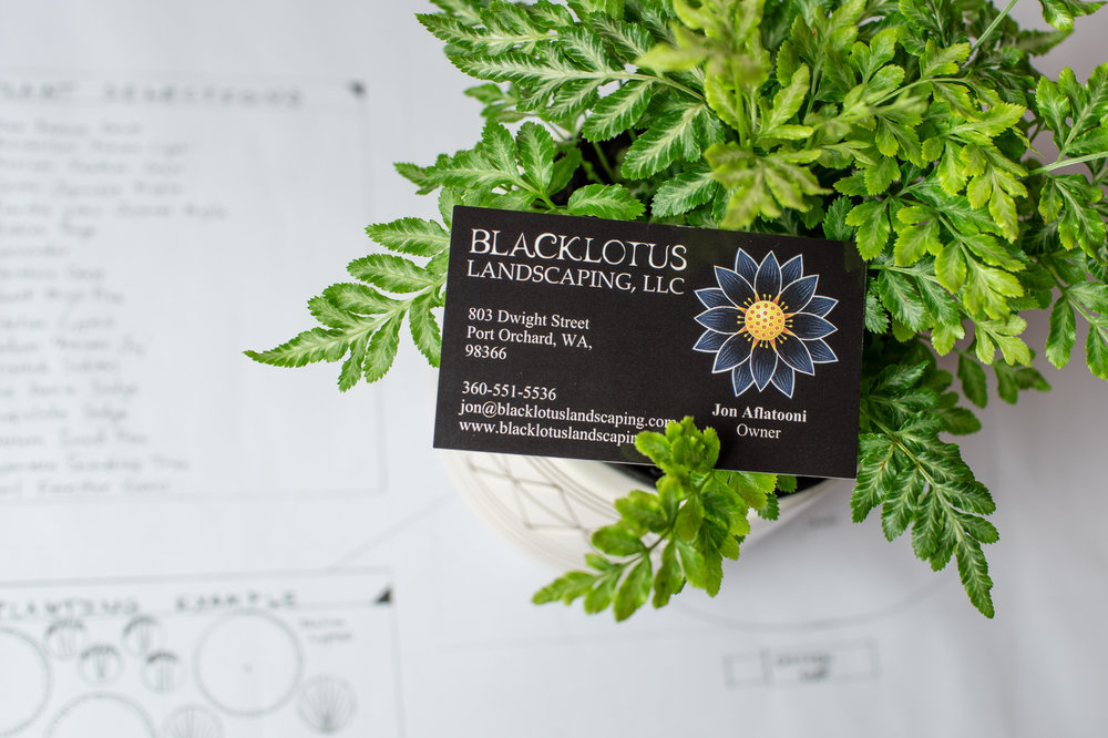 Black Lotus-13.jpg
