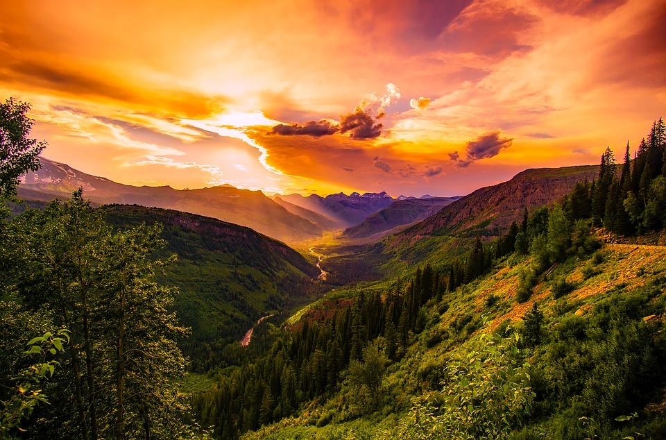 montana-free.jpg