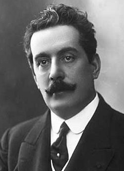 An essay on Puccini's Turandot -