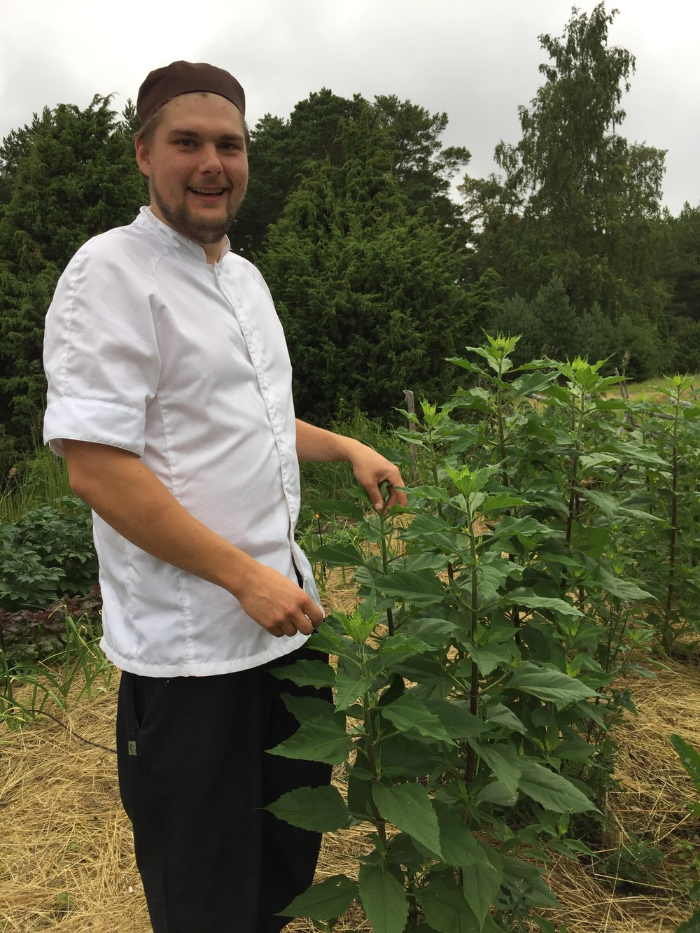 Aland chef in garden.jpg