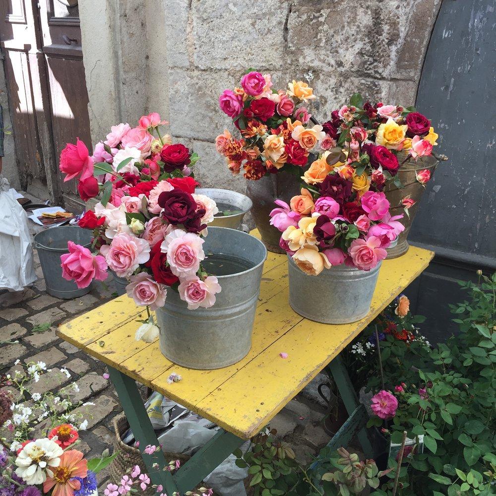Dumas roses.jpg