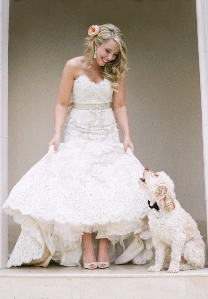 Spring Wedding Inspiration! — Little White Dress Bridal Shop ...