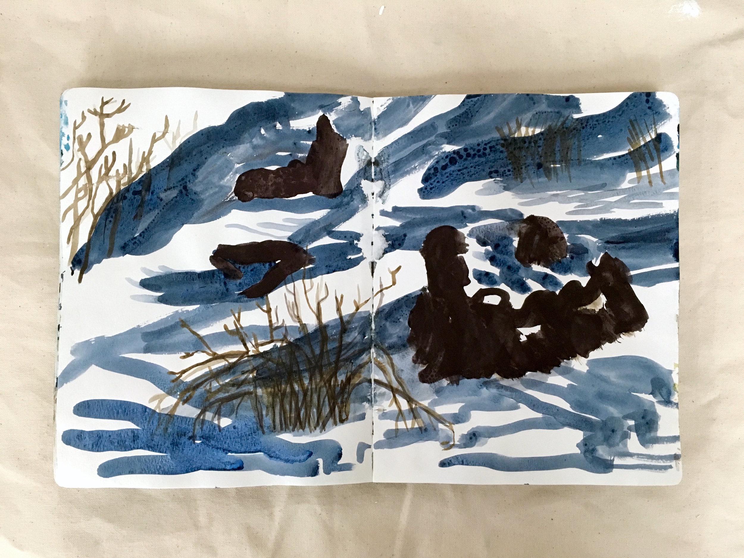 shadows-rocks-grasses