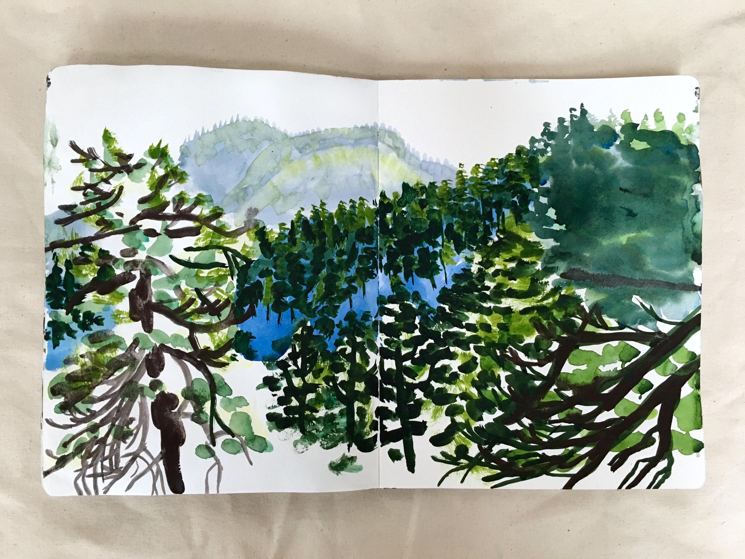 sunny-winter-trees-hills