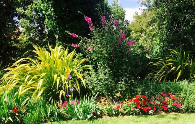 Garden-660x420.jpg
