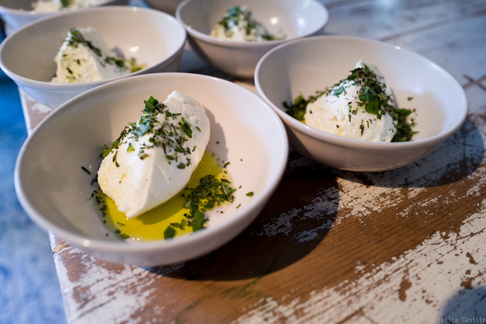 Fresh ricotta at Circle Rock Ranch.