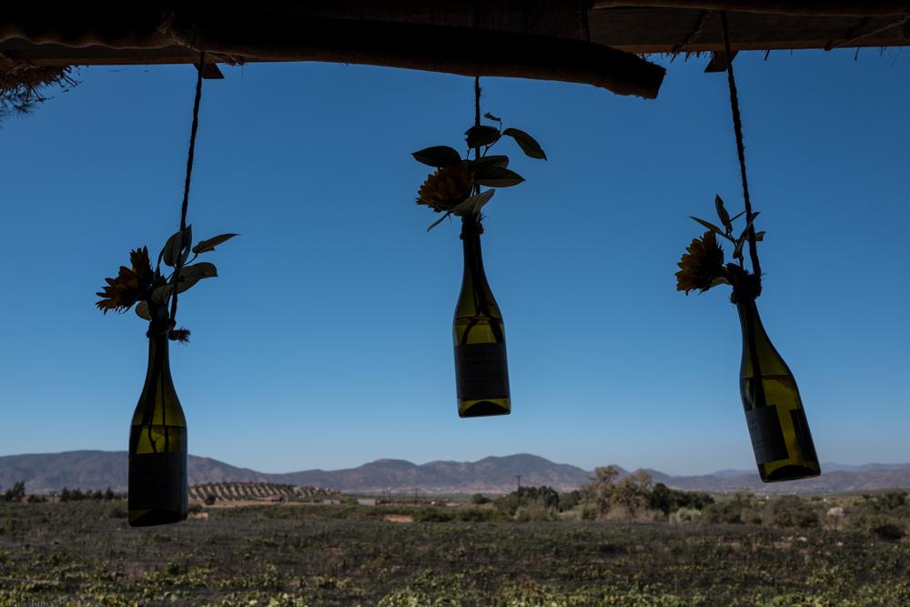 Wine country decor.