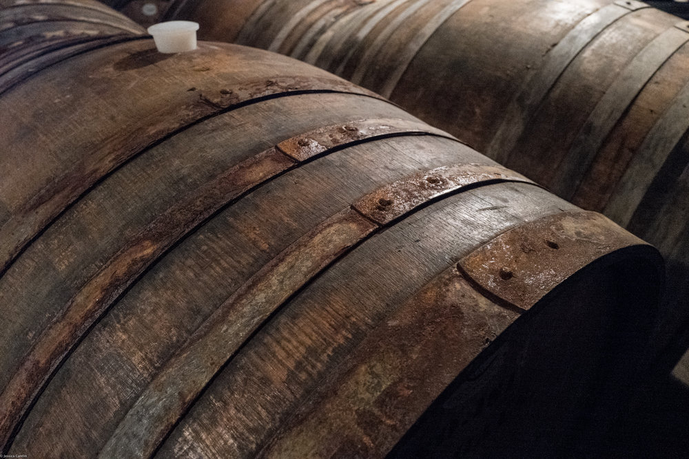 Barrels at Stony Hill Vineyard