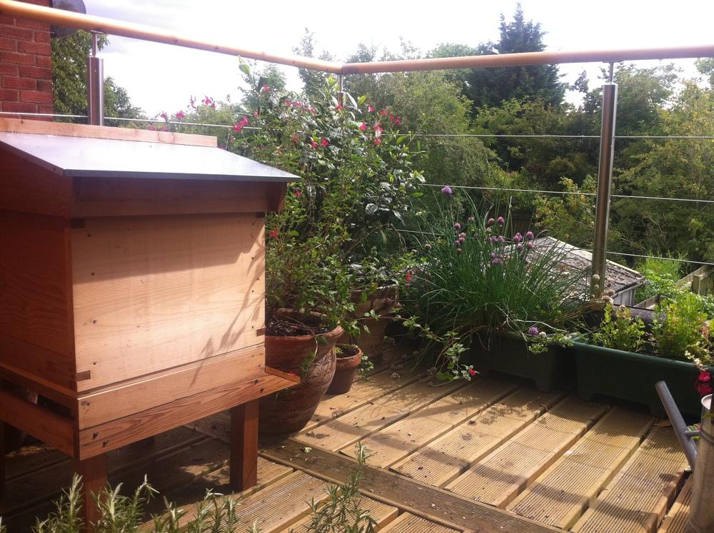 Cedar Hive at home