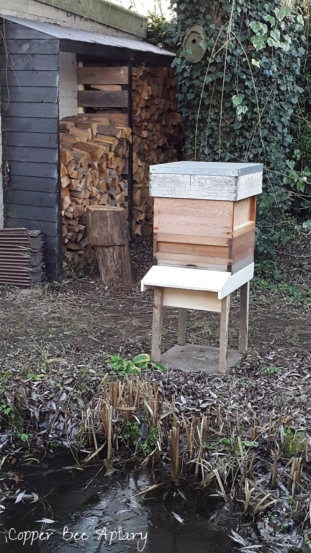 Pond Hive