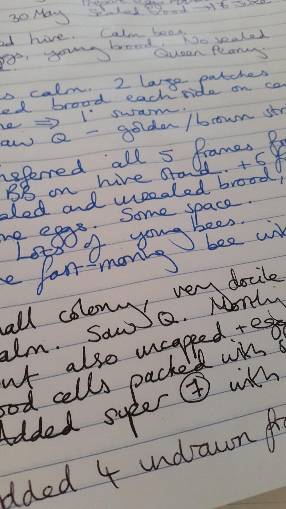 Beekeeper's notes