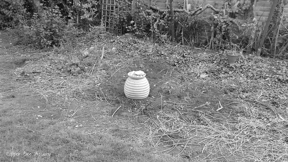 Towards evening when the ground has cooled, I fill in the pit. This pot and a dish of my grandmother's shells show the place.