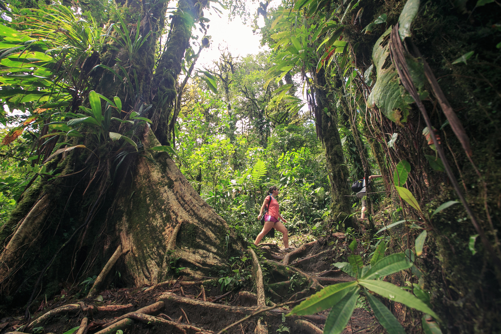 Costa Rica_Cerro Chato_hike_rainforest_SmartWool