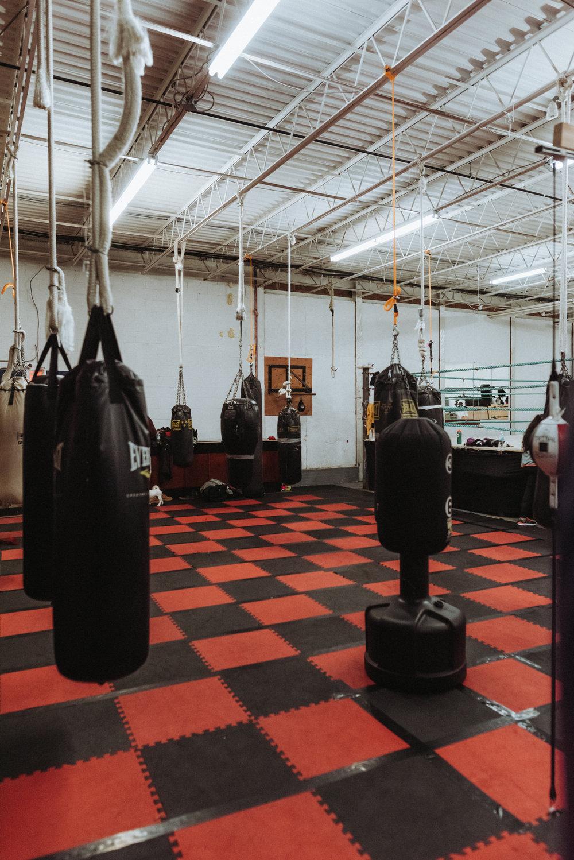 Boxing-18.jpg