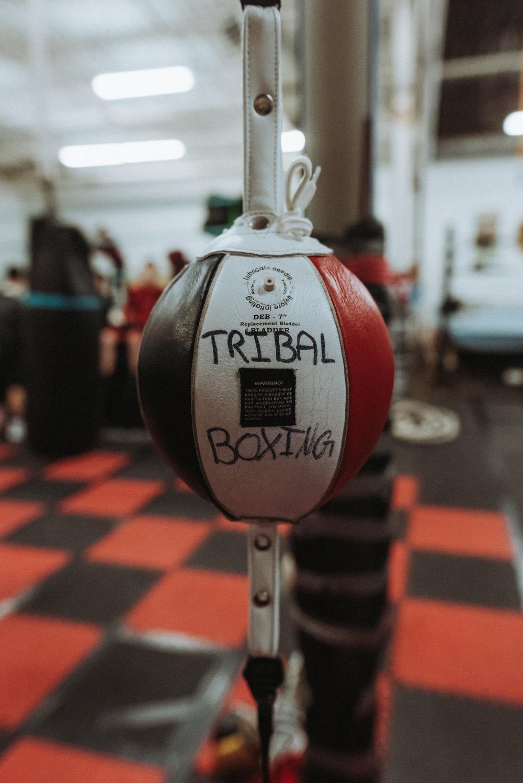 Boxing-19.jpg
