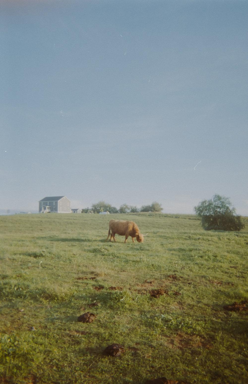 Film-Round2-32.jpg