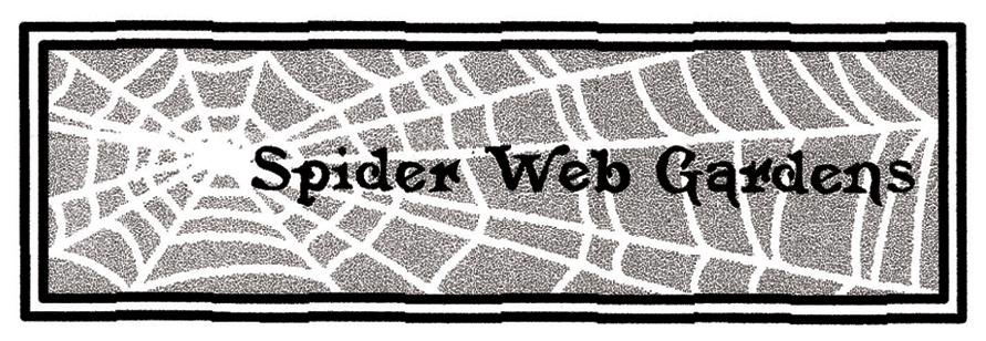 spiderweb gardens