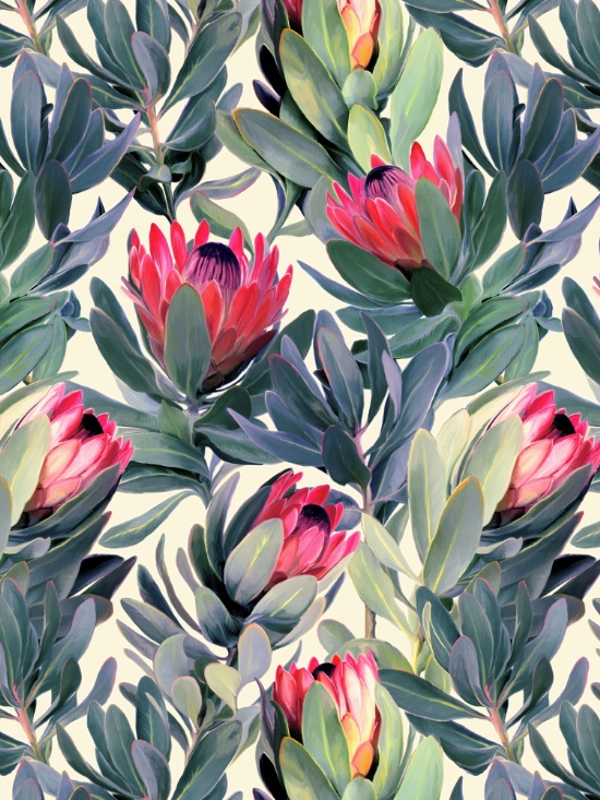 """Painted Protea Pattern""- Micklyn"