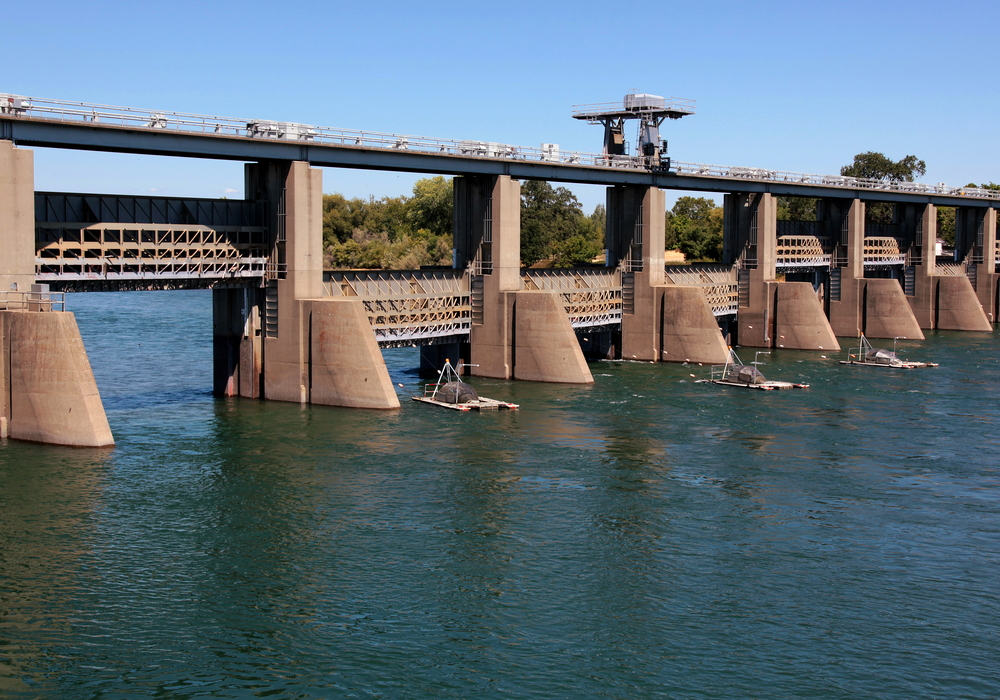 Historically, the Red Bluff Diversion Dam impounded the Sacramento River to activate a gravity diversion that irrigated 150,000 acres of farmland. The dam blocked fish passage and inundated valuable riparian habitat. In 2010, construction began on a large pump station to replace the dam, but caused habitat impacts requiring mitigation.