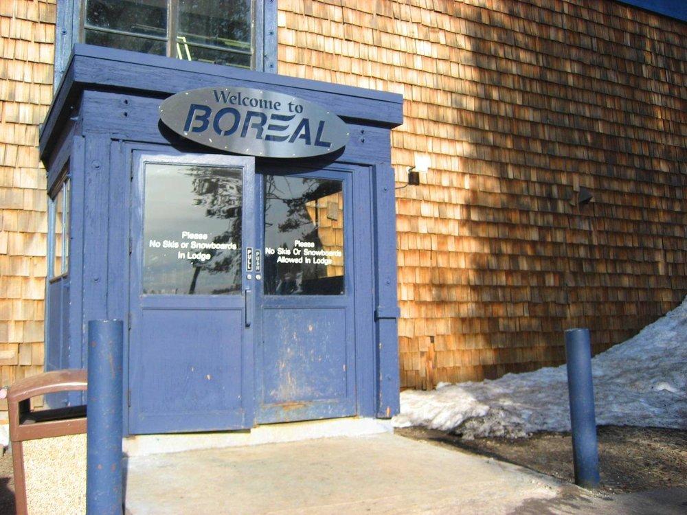 boreality 305.jpg