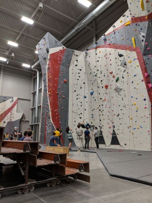 If the wooden benches in my sixth grade gym had faced a climbing wall instead of wrestling mats, I may have pursued a very different athletic pathway.