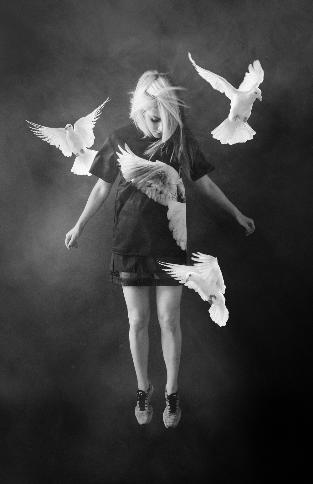 val birds.jpg