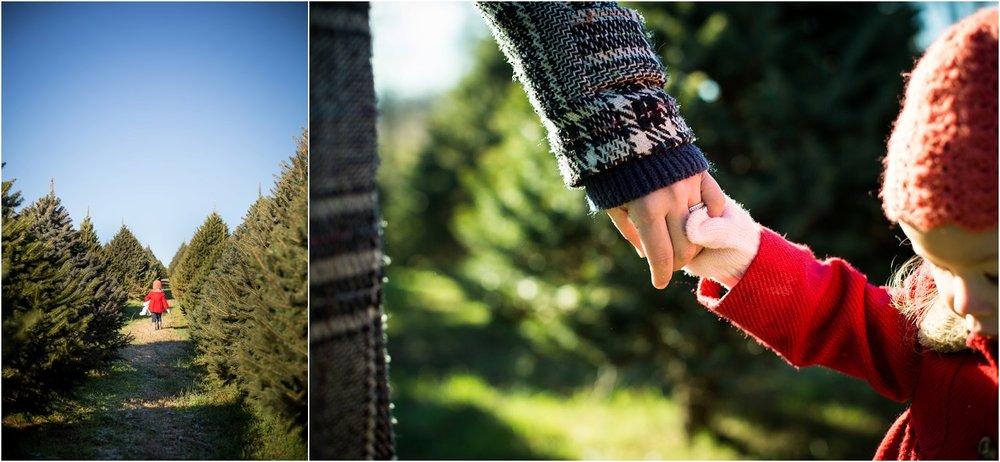 Moose_Apple_Chrismas_Tree_Farm_Family_Portraits_0010.jpg