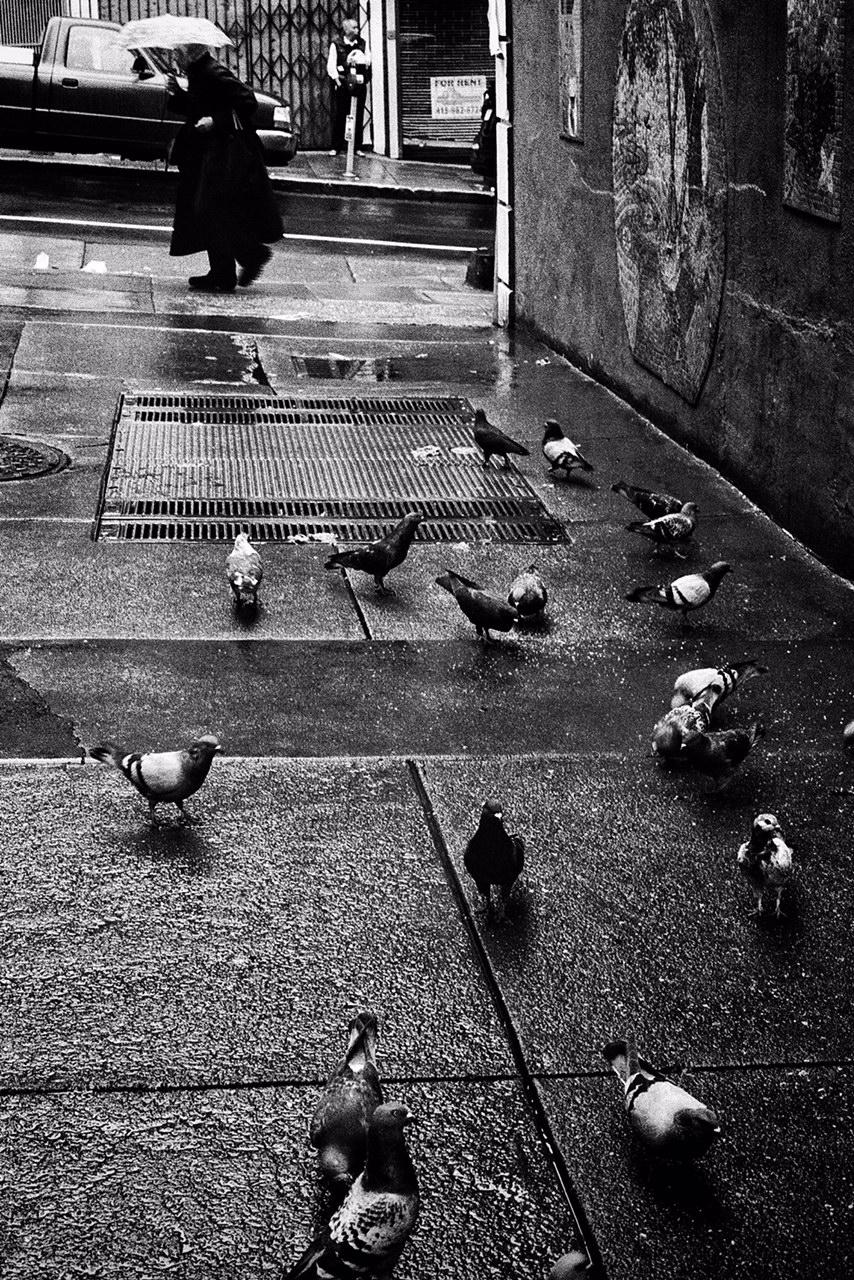Chinatown Scavengers