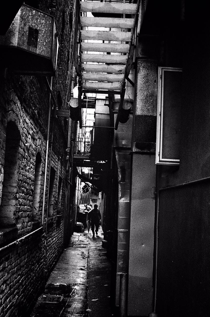 Alleyway Lurker