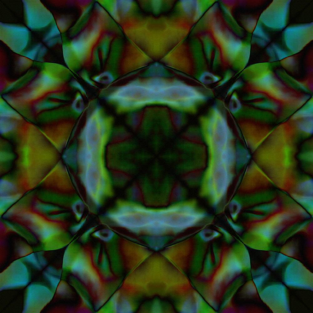Mixed | Peacock Beetle