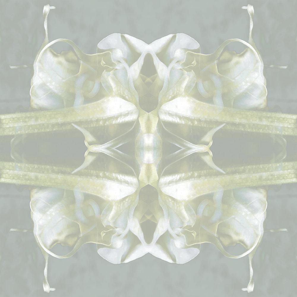 Triple Brugs | Reflected Sky