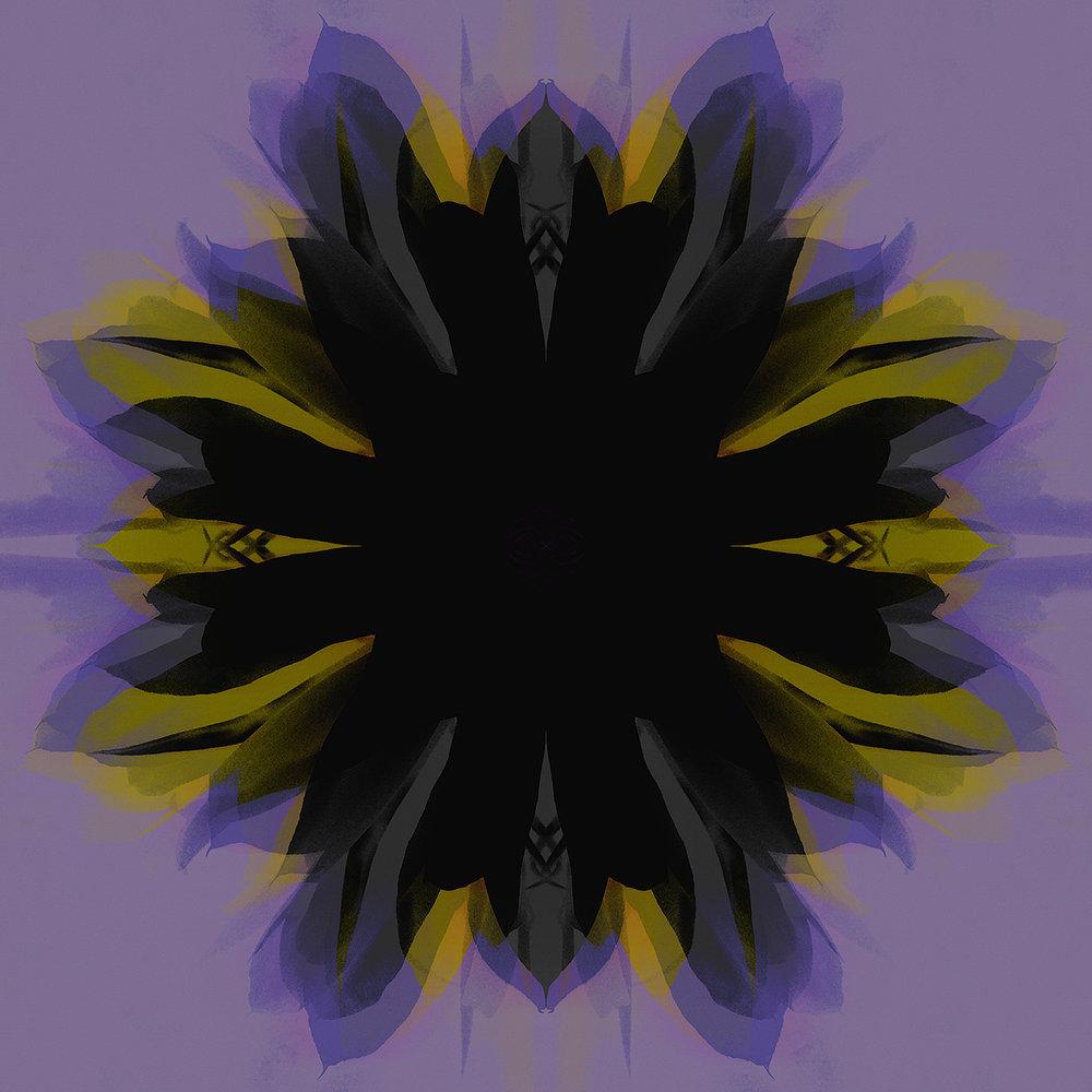 Epiphyllum | Shadowflower Yellow