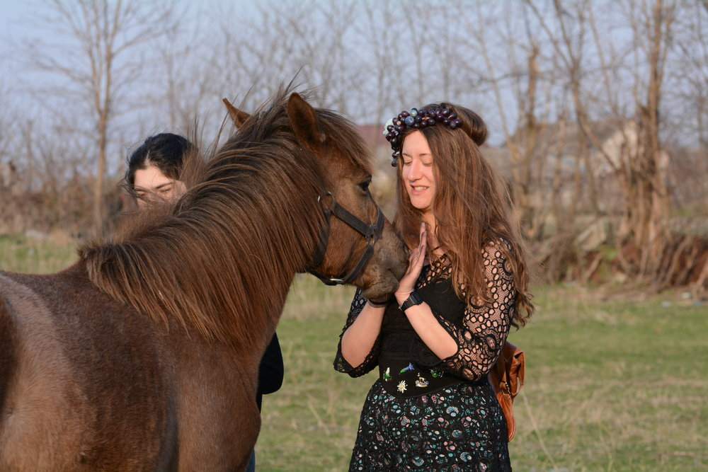 Anya apologizes to the horse for not having an extra garland
