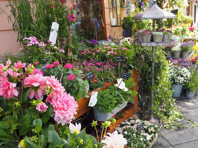 ohwego_Blumengarten_Gartenkunst_Moabit_Berlin_8.jpg