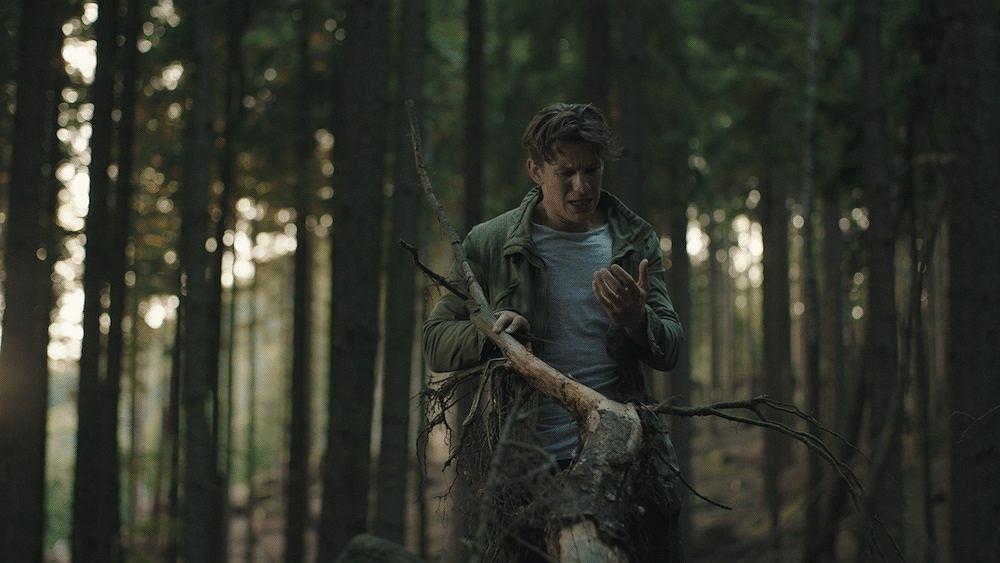 z22748652IH,Kadr-z-filmu--Redwood-.jpg